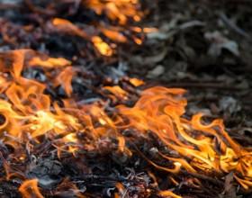 Curso de Especialização em Prevenção e Combate aos Incêndios Florestais